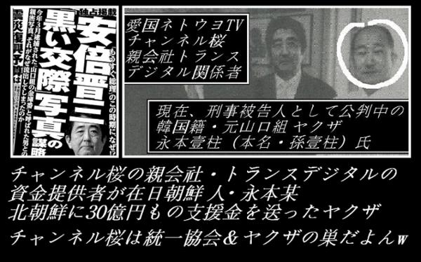 安倍晋三 ハッカビー 山口組の金庫番&チャンネル桜・親会社トランスデジタル出資者.png